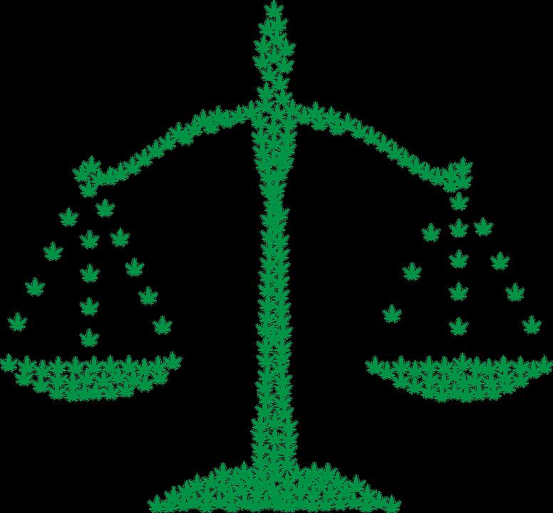 cbd legality marijuana image